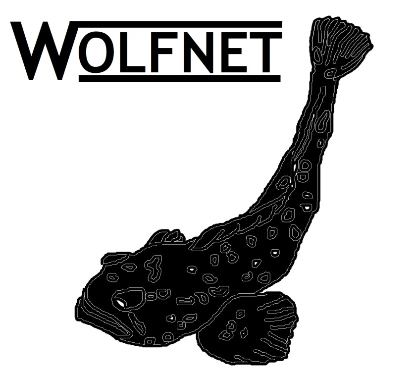wolfnet-logo-proposition
